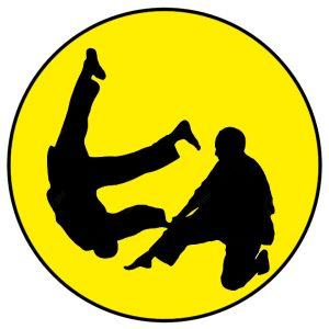 judo-couleur