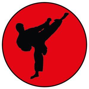 taekwondo-couleur