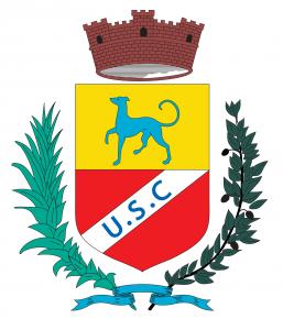 logo SANS FOND usc